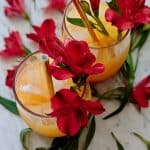 Two glasses of Bahamas rum punch, decorated with tropical flowers.